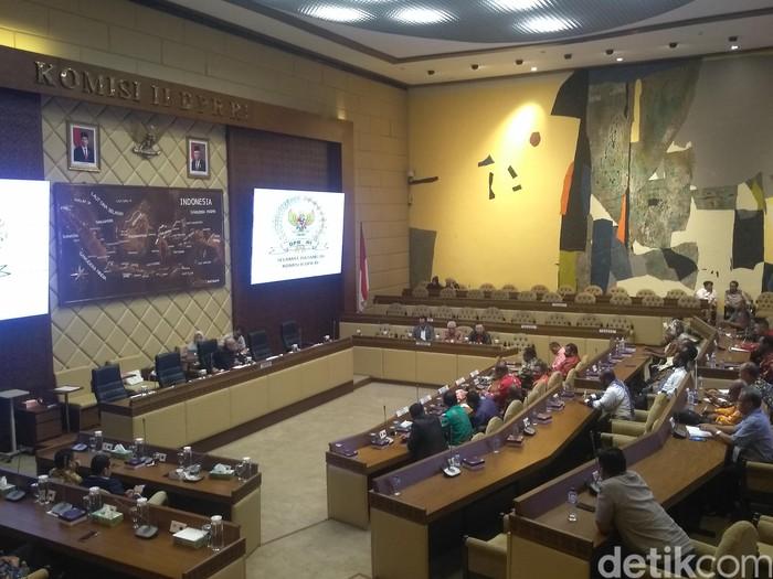 Audiensi para bupati dari Papua ke Komisi II (Foto: Nur Azizah/detikcom)