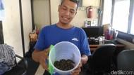 FX Rudy yang Tetap Santuy Meski Puluhan Piton Berkeliaran di Kantornya