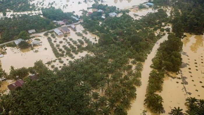 Banjir di Riau (Foto: ANTARA FOTO/FB Anggoro)