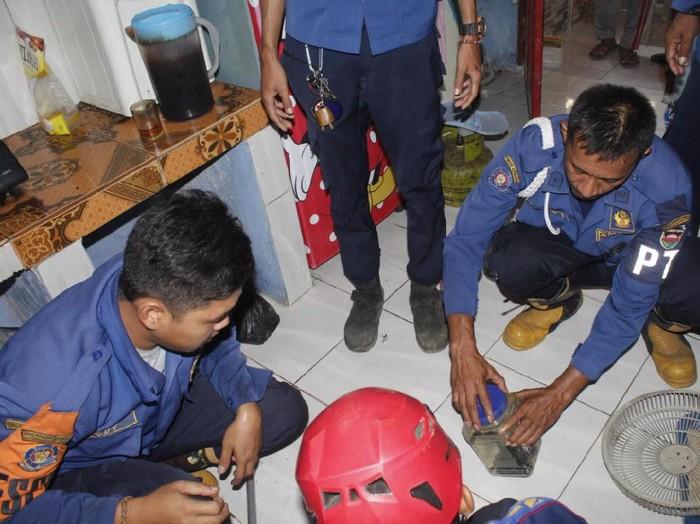 (Foto: Dok. Diskar PB Kabupaten Purwakarta) 13 ekor ular kobra ditemukan dalam rumah warga di Purwakarta.