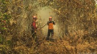 Indonesia Rugi Lebih dari Rp 72 Triliun Akibat Kebakaran Hutan 2019