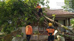 5 Kecamatan di Magetan Terdampak Angin Kencang, Evakuasi Masih Berjalan