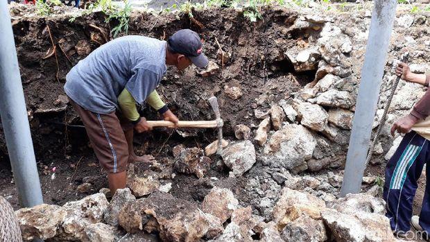 Warga membongkar talud di Dusun Kepek, Wonosari, Gunungkidul  karena diduga sebagai sarang kobra