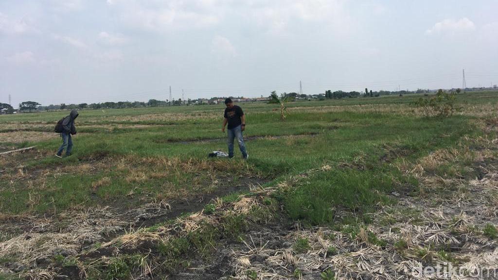 Bagaimana Tanah di Jombang Bisa Bergoyang, Begini Asal Usulnya