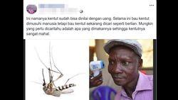 Muncul di Hoax Kentut Pembunuh Nyamuk, Siapa Pria Uganda yang Viral Ini?