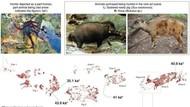 Lukisan Berumur 44 Ribu Tahun Ditemukan di Gua Sulawesi
