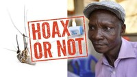 Viral Bau Kentut Pria Uganda Bisa Bunuh Nyamuk dari Jarak 6 Meter