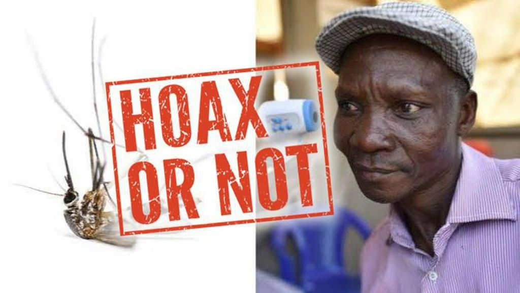 Boro-boro Bisa Bunuh Nyamuk, 99 Persen Kentut Bahkan Tidak Berbau!