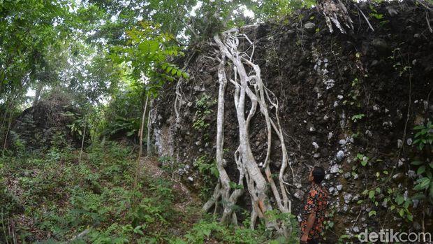 Kisah Desa di Pangandaran yang Kerbaunya Raib Secara Gaib