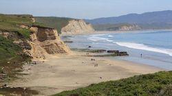 Mengenal Pantai California yang Heboh Ikan Penis