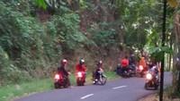 Teror Ular Kobra Melintas di Jalan Ciamis, Pengendara Pilih Berhenti