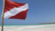 Kamu yang Suka Diving, Tahu Arti Bendera Merah Setrip Putih?