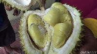 Ada Lambang Durian dalam Kereta di Mars, Serial TV Ini Jadi Viral