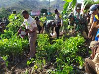 Hari Juang TNI AD, Tentara di Dompu Reboisasi Hutan