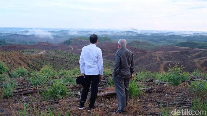Presiden Jokowi meninjau lokasi ibu kota negara yang baru di Penajam Paser Utara, Kaltim.