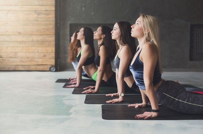 Women in yoga class, cobra pose stretching. Healthy lifestyle in fitness club