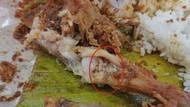 Hii Jijik! Ini Pengalaman Netizen Saat Temukan Belatung di Makanan