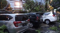 Hujan Angin, Pohon Tumbang Timpa Tiga Mobil di Bandung