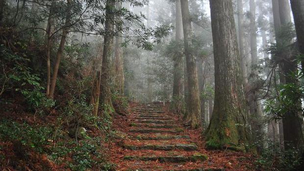 Mengenal Kumano, Si Tanah Sakral yang Jadi Destinasi Terbaik Jepang 2020