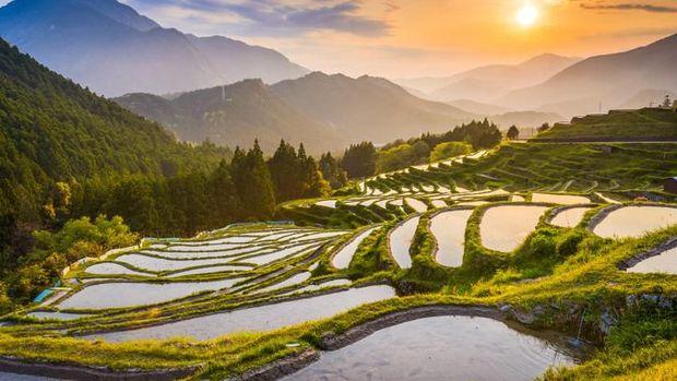Bukan Tokyo, Ini Destinasi Terbaik di Jepang untuk 2020