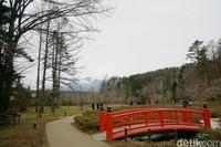 Satu lagi yang eksotis di Desa Ninja, kamu bisa menikmati Gunung Fuji di sini. Sangat cantik! (Syanti/detikcom)
