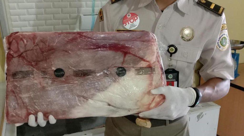 Ratusan Kg Daging Sapi Beku Diamankan Petugas Karantina Pangkalpinang