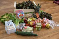 5 Komunitas Ini Kumpulkan Sampah Makanan Sisa, Ada yang Dari Indonesia