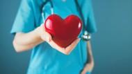Jantung Sehat dengan Asupan Antioksidan 5 Makanan dan Minuman Ini