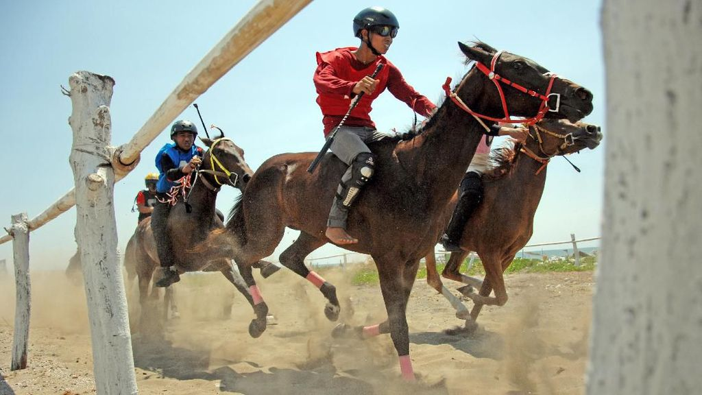 Pacu Kuda Tradisional, Magnet Wisata di Jeneponto Sulsel