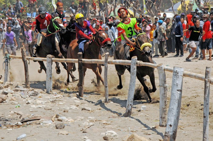 Pacu Kuda Tradisional Magnet Wisata Di Jeneponto Sulsel