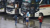 Curhat Pengusaha Bus: Cuma Bisa Bertahan Dua Bulan Lagi