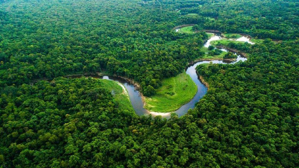 Sungai Amazon Meluap, Petani di Brasil Gagal Panen
