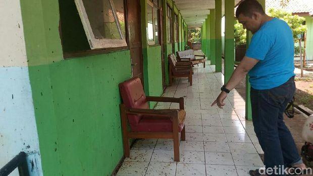 Hiii... Ulat Bulu Teror SLBN di Cirebon