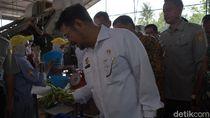 Permintaan Tinggi, Mentan Sebut Edamame Indonesia Bisa Mendunia