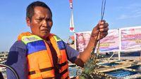 Di Depan Edhy Prabowo, Nelayan Kecam Rencana Ekspor Benih Lobster