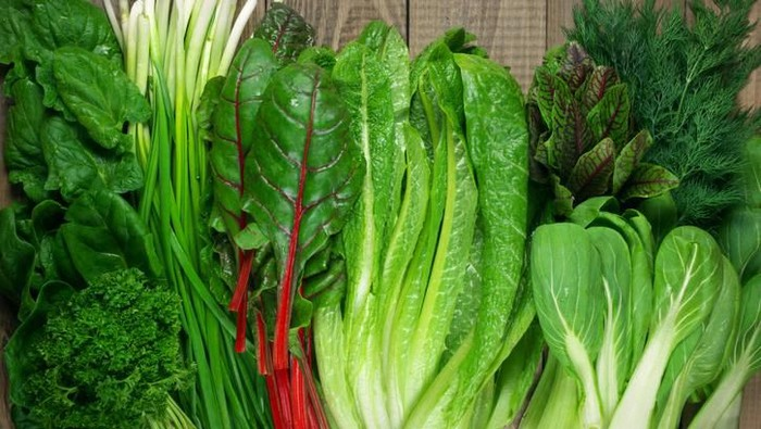 Terungkap! Ini 5 Jenis Sayuran Hijau yang Paling Sehat