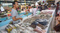 Agar Tak Salah Pilih, Ini Tips Membeli Ikan Segar