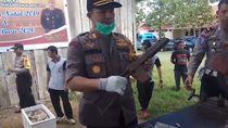 Polisi Musnahkan Ratusan Liter Miras dan Senjata Rakitan di Ampana