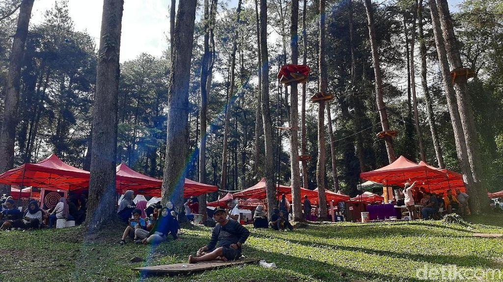 Mengungkap Jejak Sejarah Kopi Gunung Slamet Melalui Festival Kopi