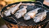 Aneka Ikan Bakar dan Goreng Nikmat Tersedia di Sini