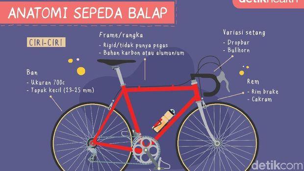 Infografis anatomi sepeda balap alias road bike