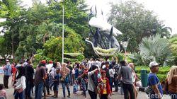 Libur Tahun Baru, Kebun Binatang Surabaya Diserbu Lebih 63 Ribu Pengunjung
