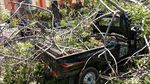 Duh, Ada Mobil Tertimpa Pohon Tumbang di By Pass Ngurah Rai Bali