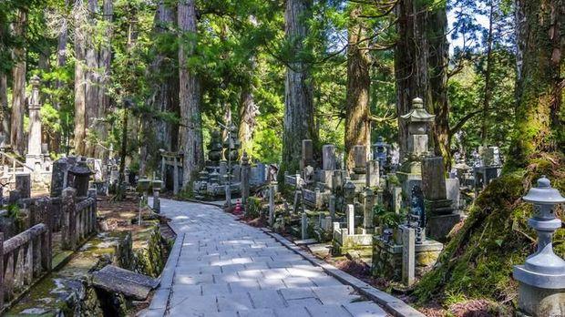 Di Sini Ada Kuburan Mayat Hidup, Berani Datang?