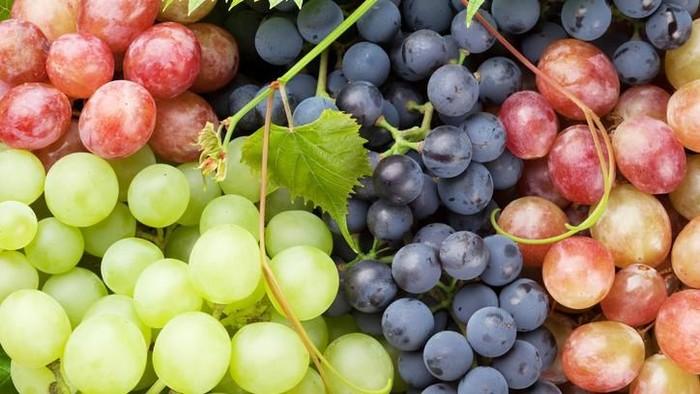 5 Jenis Anggur yang Rasanya Enak dan Kaya Nutrisi