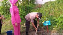 1.000 Bibit Ditanam untuk Ganti Pohon Mati di Ngawi Akibat Kekeringan
