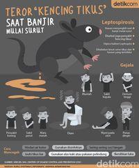Penyakit kencing tikus banyak menyerang sehabis banjir.