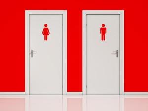 Alasan Ilmiah Toilet Wanita Selalu Antre Lebih Panjang Dibandingkan Pria
