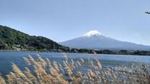 Liburan ke Jepang Tapi Nggak Ada Uang Buat Sewa Hotel? Coba Trik Ini