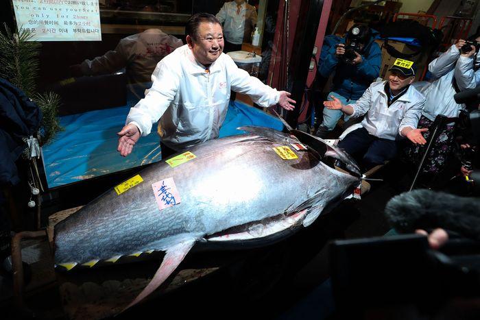 Pasar ikan Toyosu menggelar lelang ikan di awal tahun 2020. Salah satu ikan yang dilelang di sana adalah ikan tuna seberat 276 kilogram.
